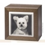 Pet Cremation Urns and Keepsakes
