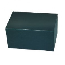 Painted Bronze Chest Green